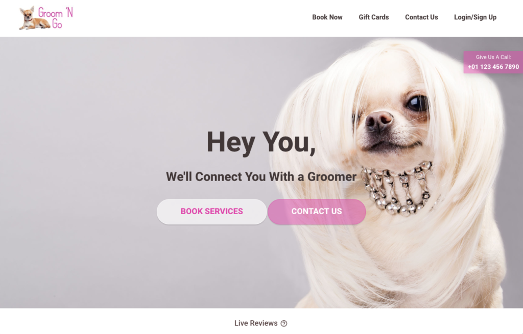 business ideas - Mobile Pet Grooming